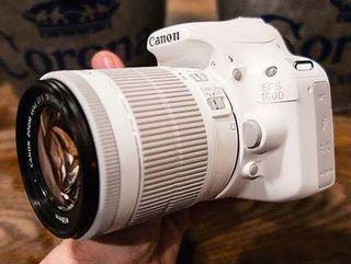 Canon d100 white