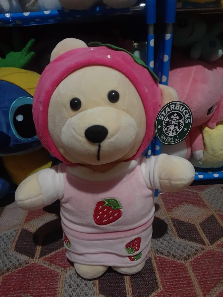 Teddy bear starbuck ORI new tag