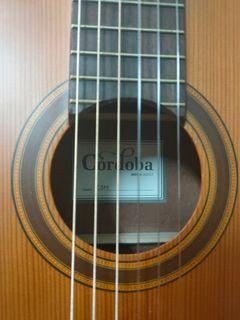 Cordoba C3M 紅松 古典 單板 吉他
