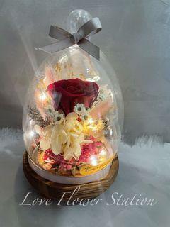 Glass Design Preserved Rose With LED Light/ Mother's Day Flower Gift/ Birthday Flower Gift Idea/ Preserved Rose/Dried Flower