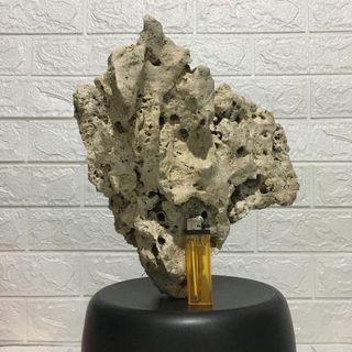 Batu Karang Kapur Gunung