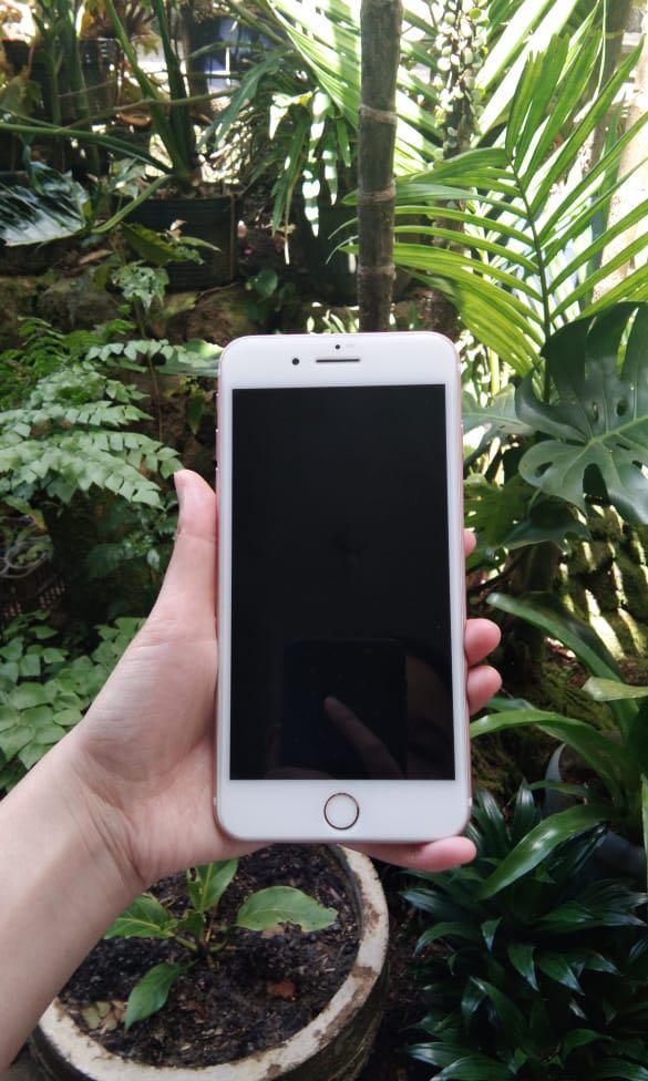 Iphone 7+ Rosegold Ori Ibox