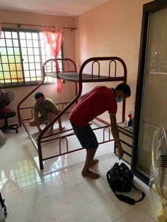 Bunk bed disassembly /assembly/movers /transportation/disposal services