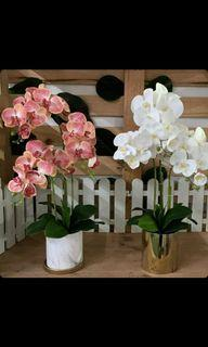 (Cash On Delivery) Artificial orchids plant in ceramic pot   $59.90
