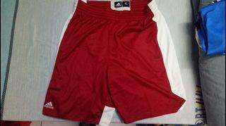 正品全新Adidas XL 籃球運動短褲