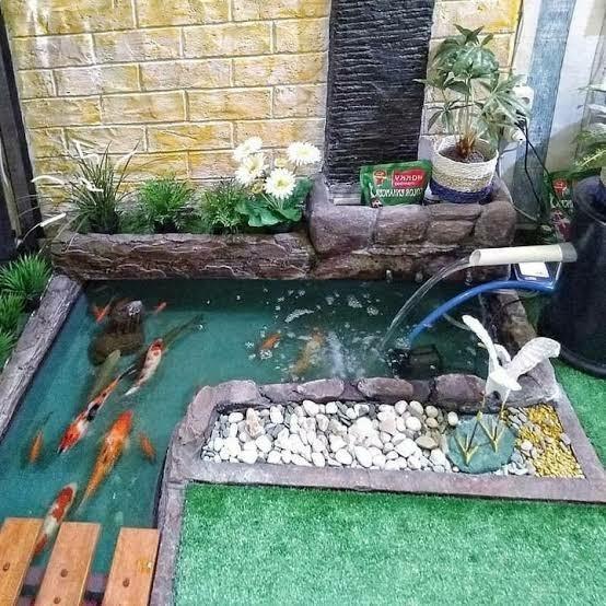 Jasa pembuatan kolam ikan koi minimalis