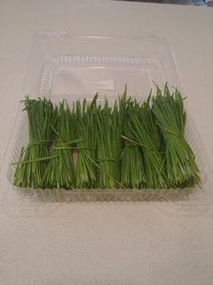 Mini sheaves of grass