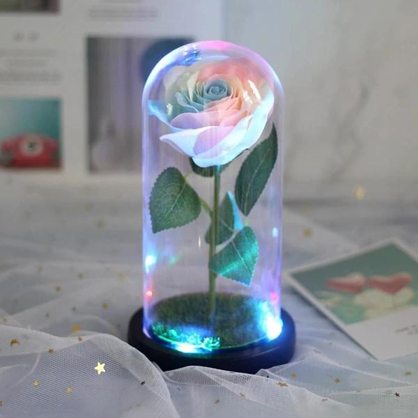Galaxy rainbow rose jar with lights and photo