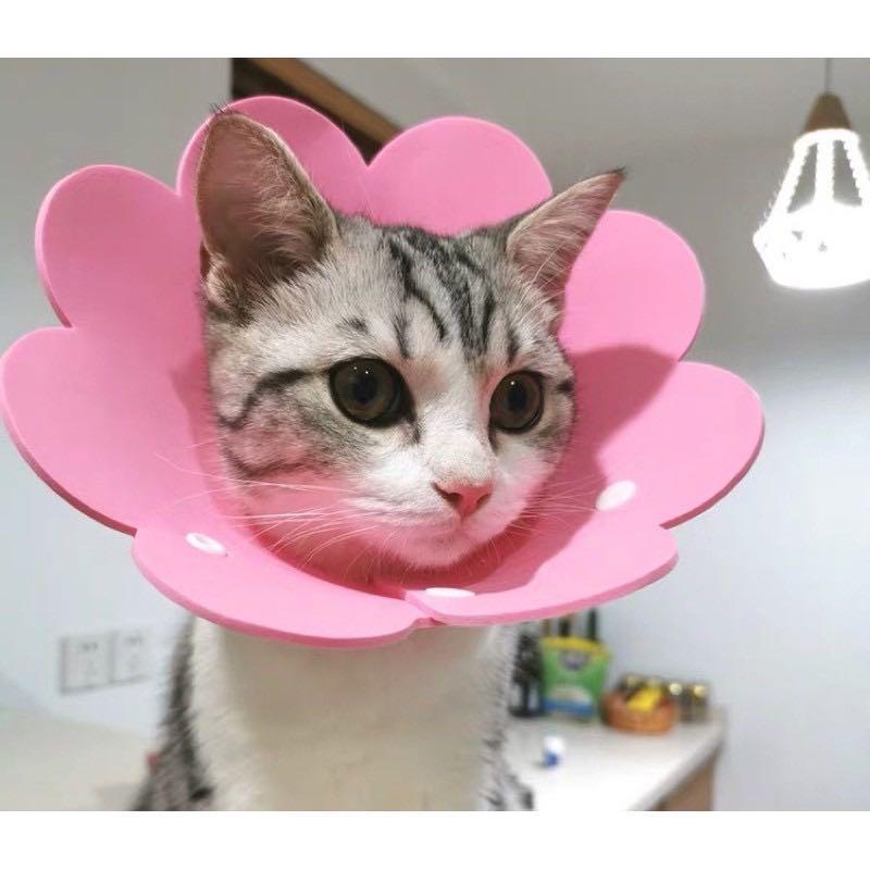 喵星人系列#S最小號軟圈套頭(粉色)