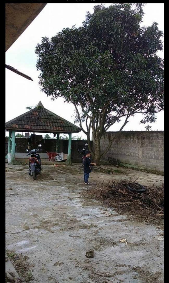 Tanah Murah Lokasi strategis cocok untuk minimarket di Bogor