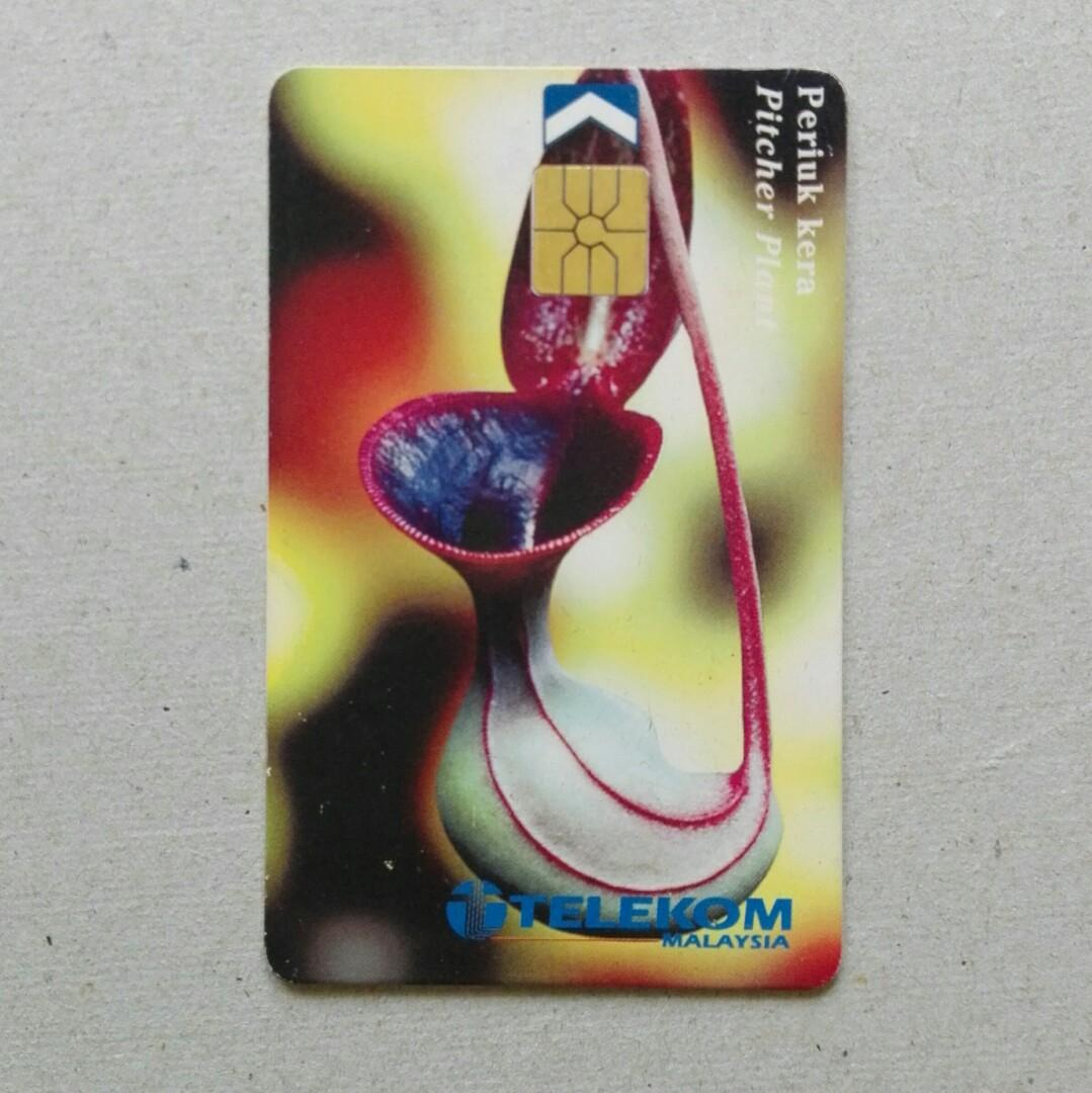 Used Telekom Phone Cards - Endangered Species, Pitcher Plant