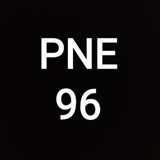 PNE 96 WITH MOTOR SYM 110R