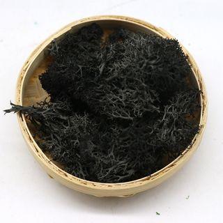 苔蘚 苔癬 為黑灰綜合
