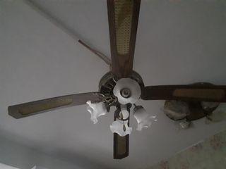 Light and fan