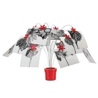 Umbra 紅色即影即有相架 照片樹 red petal desk tree for Polaroid photos cards