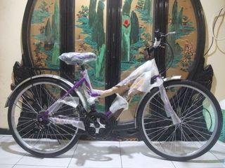 全新26吋18段變速腳踏車一台2000兩台3500附燈鎖桃園自取brand new bicycle free locks and light  Taoyuan Station Can be shipped nearby