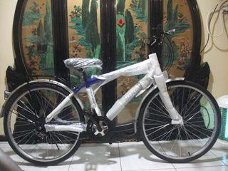 brand new blue bicycle free locks and light Taoyuan Station Can be shipp