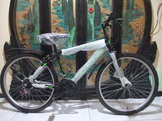 brand new bicycle free locks and light Taoyuan Station