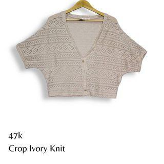 Crop Ivory Knit