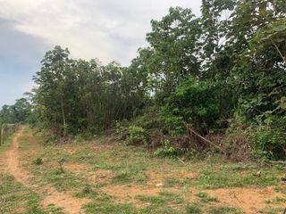 [WTS] Tanah Pertanian Temerloh Pahang