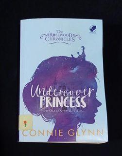 Novel Preloved - Undercover Princess