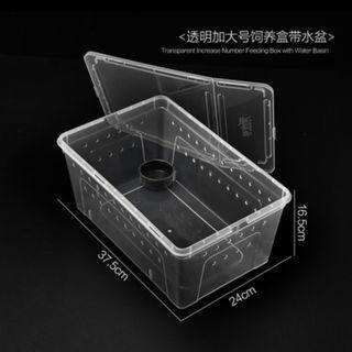 柴灣水中情 透明飼養膠盒加大號37.5x24x16.5cm(送水盆) BD022