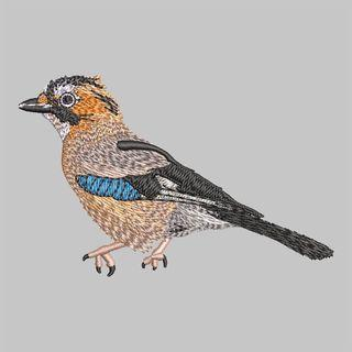Embroidery Design: Baby Sparrow