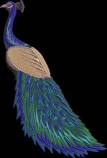 Embroidery Design: Peacock