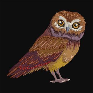 Embroidery Design: Saw Whet Owl