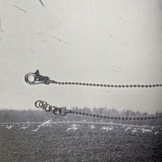 《飾品配件》316醫療鋼 龍蝦鉗項鍊