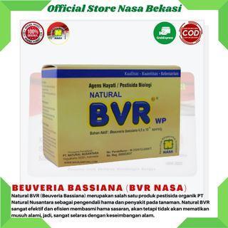 Natural BVR Pestisida Organik Pengendali Hama Tanaman