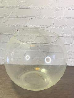 圓缸 魚缸