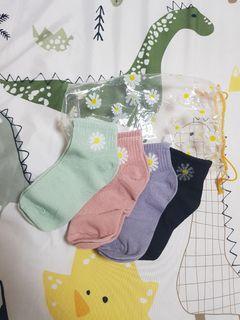 小雛菊襪子