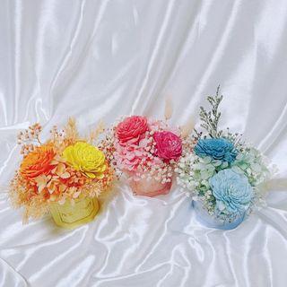 揀花❤︎DIY擴香小花盆材料包 :三色:親子DIY 手作 乾燥花盆