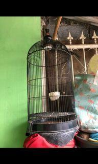 [BARTER] [TUKAR TAMBAH APA SAJA] Sangkar burung Lovebird
