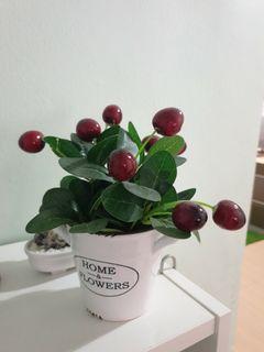 Artificial Cherry 🍒  Plant