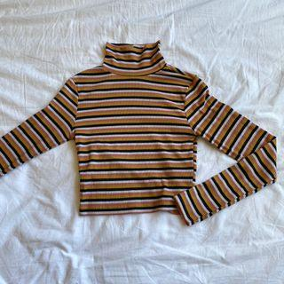 Striped cropped turtle neck