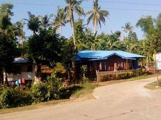 Rush Sale! 4 hectare Premium Lot Situated in Rizal Palompon Leyte.