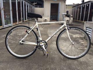 Raleigh  Trent Sport bike