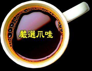 嚴選爪哇【一磅裝咖啡豆】