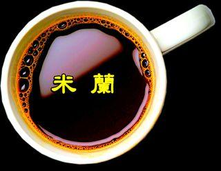 米蘭【一磅裝咖啡豆】