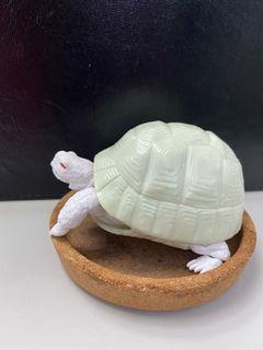 陸龜造型環保扭蛋