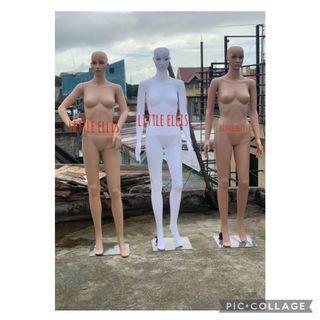 Whole Body Manequin FREE WIG