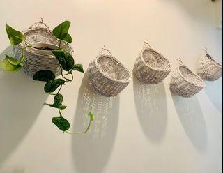 Hanging Wall Planter Basket