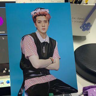 EXO-SC 1 Billion Views Sehun Postcard
