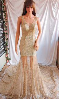 shine & shimmering long trail gown
