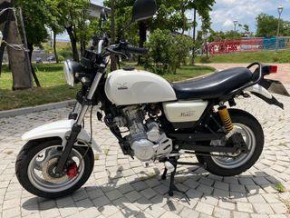 小雲豹 125