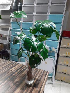 Skgarden   monstera in Glass Vase with leca   $39.90   Qxpress delivery $10   artificial plant local supplier   indoor   outdoor   home decor   decoration