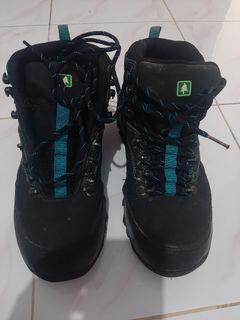 Sepatu consina