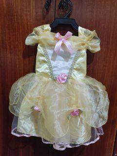 Princess Costume or Dress for Baby 6-12mos